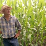 farmer-john-cornfield
