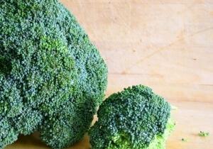 Brassica olereacea w uprawie