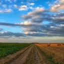 Zmiany w polskim rolnictwie